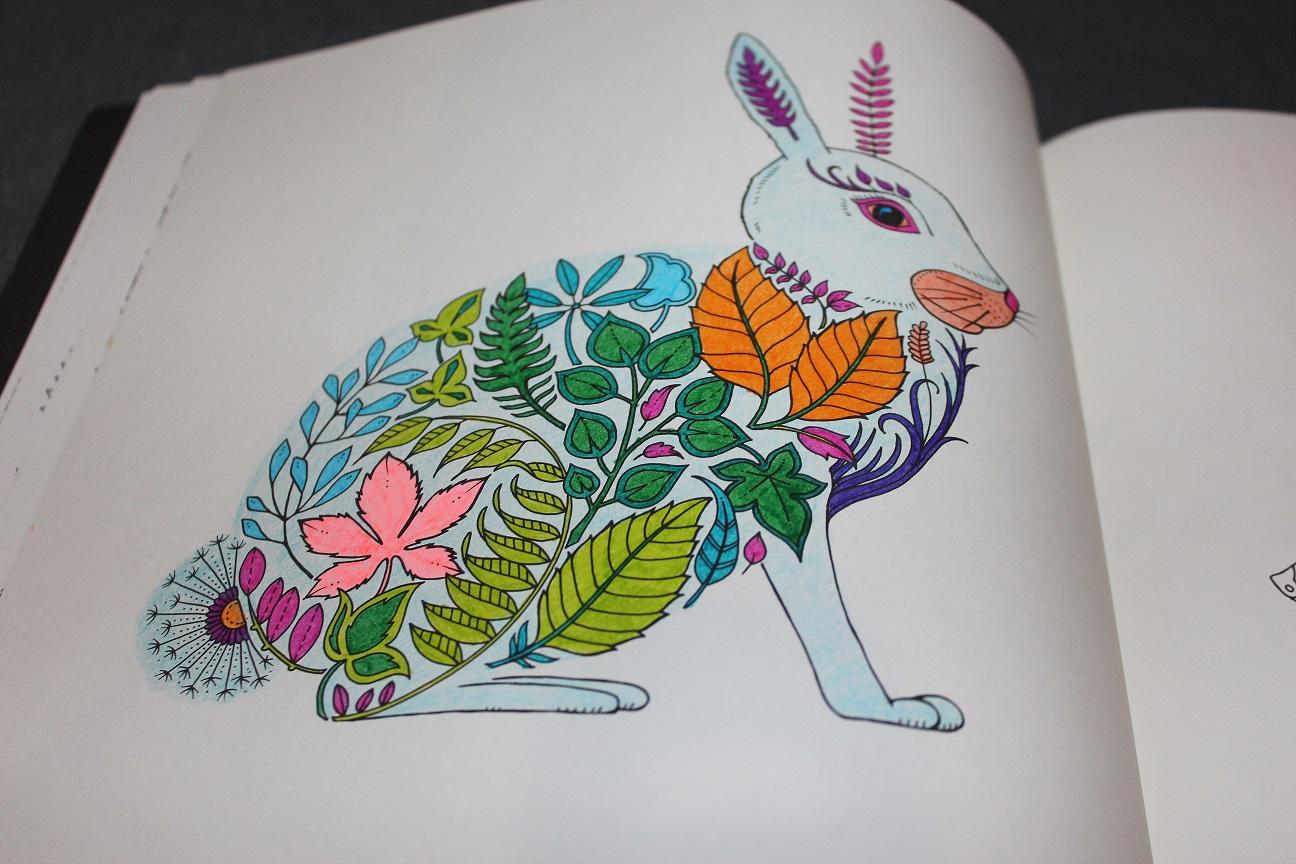Gizemli Orman Buyukler Icin Boyama Kitabi 8