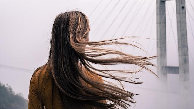 makanan penambah nutrisi rambut