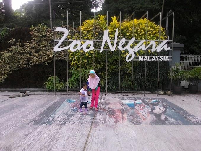 Blogger Day bersama Xing Xing di Zoo Negara !