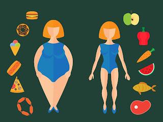 body slim fast comprar