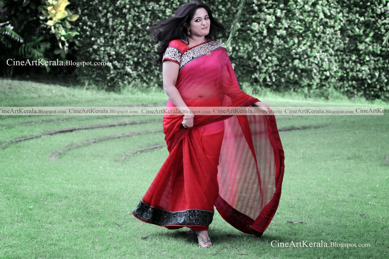Kavya Madhavan Saree Through Pictures