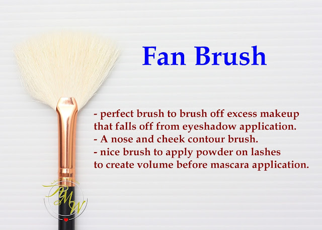 a photo of Riot Fan Brush