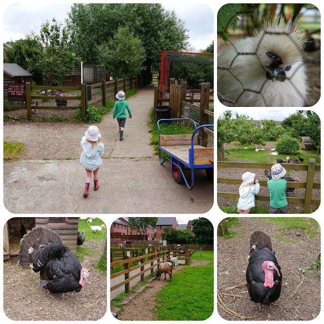 stonebridge city farm nottingham
