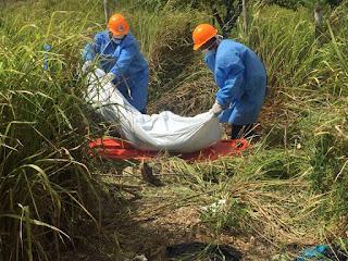 Resultado de imagen para Cadaver de mujer encontrado en estado avanzado de descomposicion en la romana