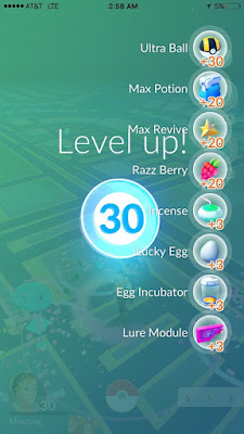 This is what Level 30 looks like in Pokémon GO