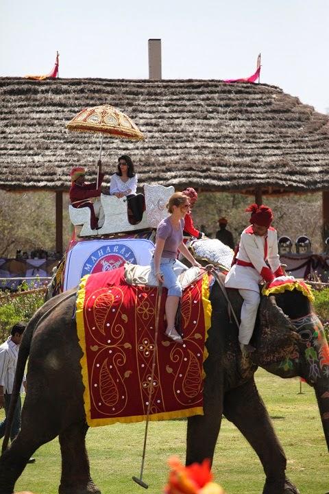 Elephant Polo Match in Jaipur