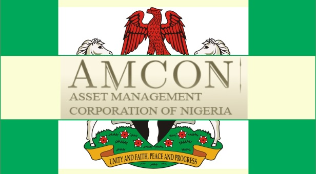 AMCON takes over Airijet Airlines over N10b debt
