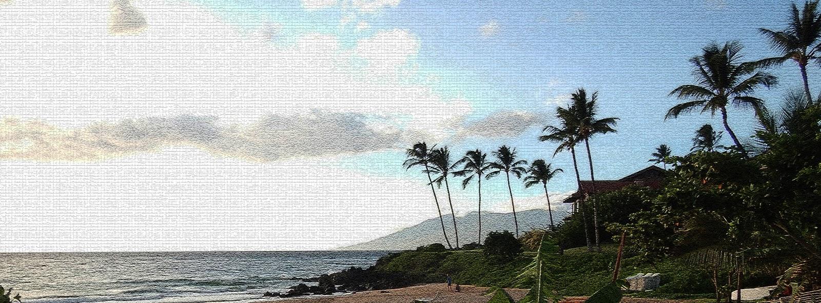 Relief: A Trip to Maui