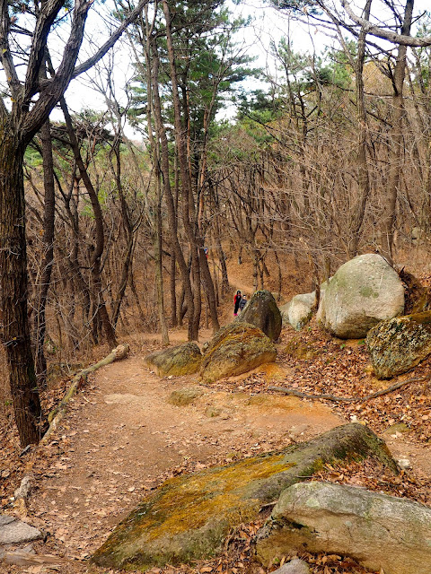 Forest hiking path in autumn, on Geumjeongsan Mountain, Busan, South Korea
