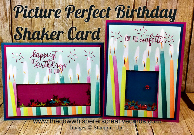 Card, Picture Perfect Party, Birthday, Shaker, Projects, Video