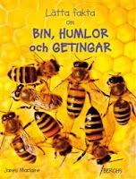 Omslag till Lätta fakta om bin, humlor och getingar. Bilden föreställer några bin som rör sig över en vaxkaka.