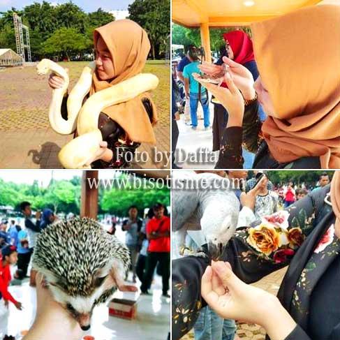 Patriot Fauna Komunitas Pecinta Hewan Bekasi
