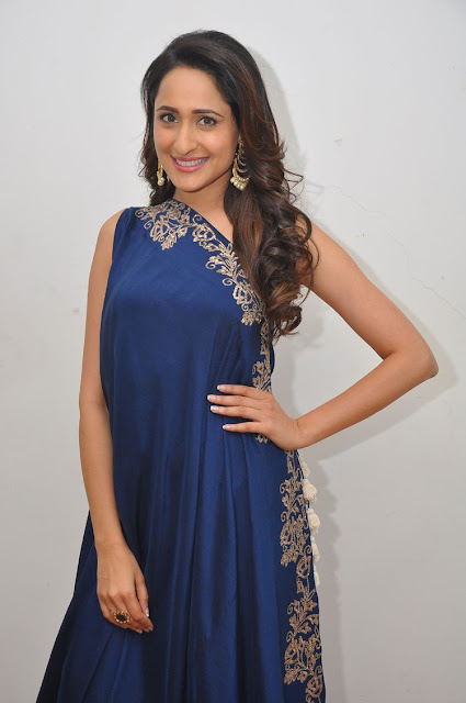 Pragya Jaiswal at Om Namo Venkatesaya Success Meet