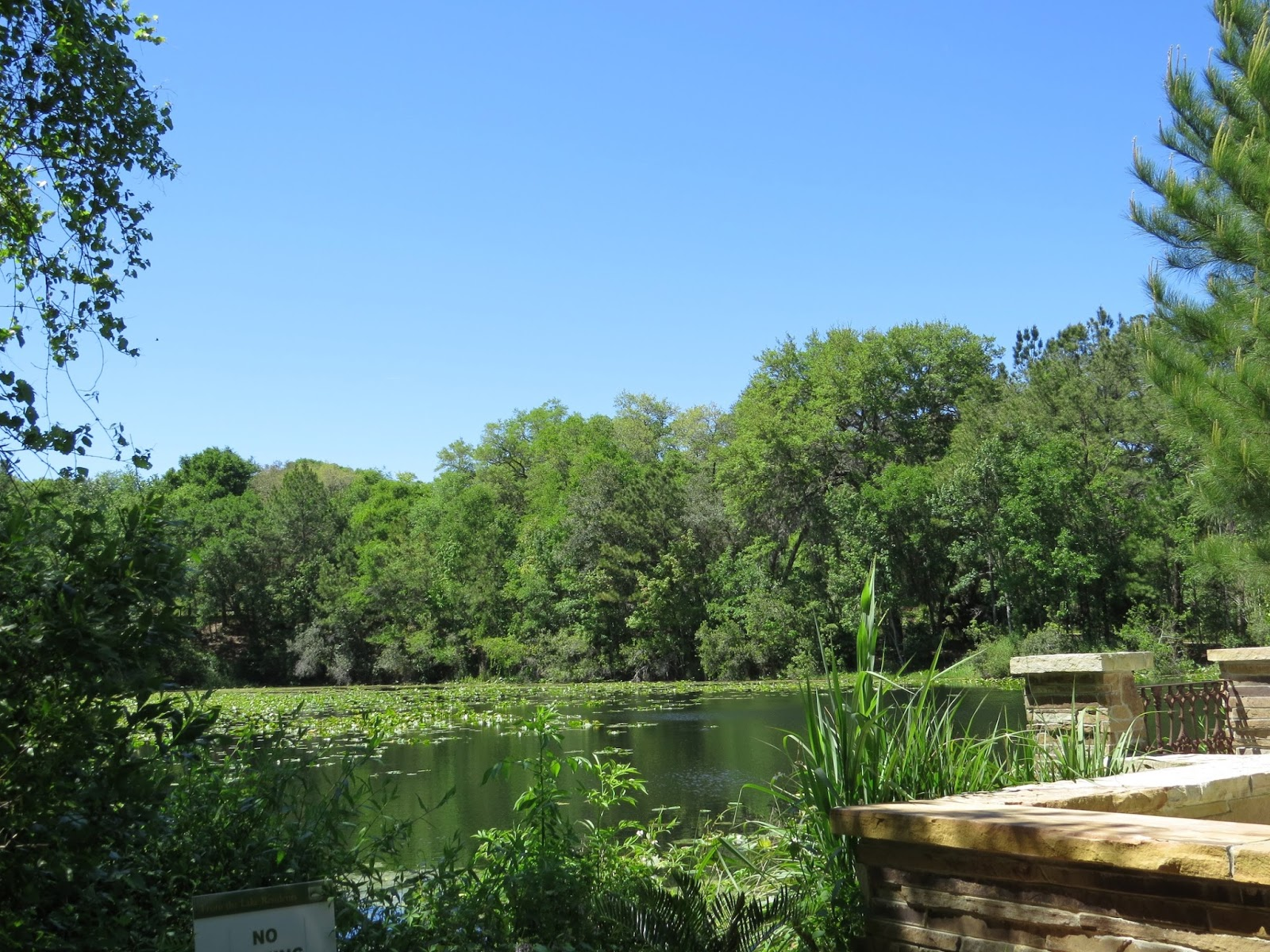 Creative Everyday Life With Mary Lemmenes Visiting The Jacksonville Arboretum And Gardens