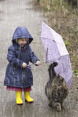 Cute picture: raining day  [23-8-18]