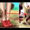 Ketahuilah Jika Kamu Didekati Kucing, Berarti Ada 3 Pertanda Ini Dari Allah
