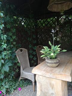 arboretum Ryki, altana w ogrodzie