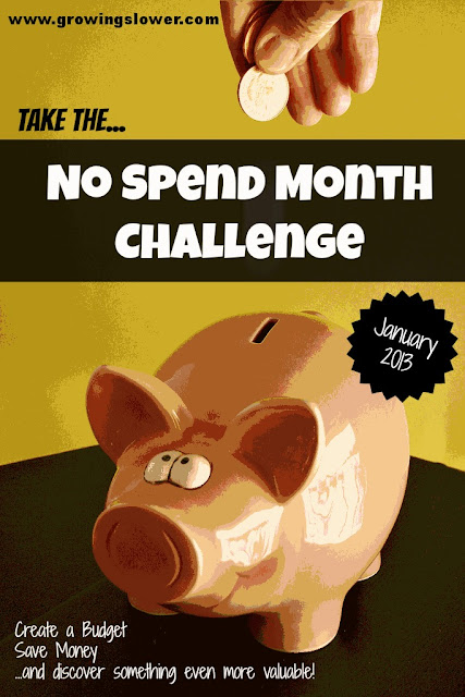 Pink Piggy Bank Caption: Take the No Spend Month Challenge January 2013 Create a Budget, Save Money, and discover something even more valuable!