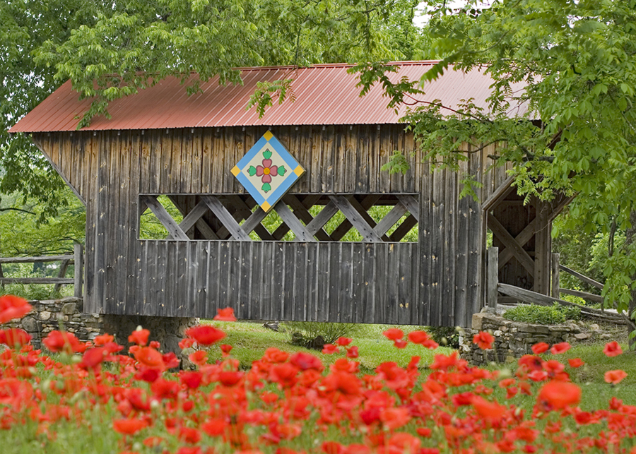 The Literate Quilter: The Heartland's Grass Roots Movement ...