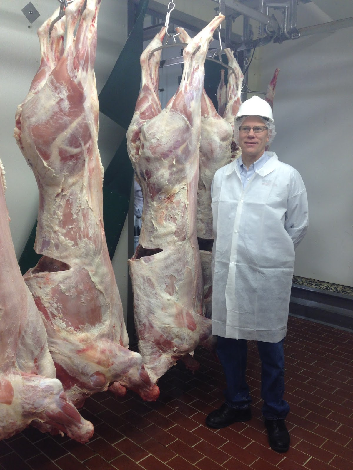 You Can See The Size Of The Veal Carcasses At Marcho Farms. This Man Is  About 6 Foot Tall