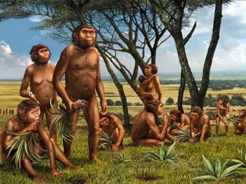 Peradaban Manusia Purba di Indonesia Asal Manusia