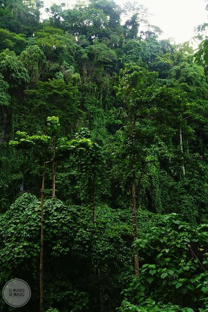 Camiguin-la-isla-verde-que-ver-hacer-katibawasan-falls-ambiente