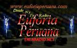 Euforia peruana radio