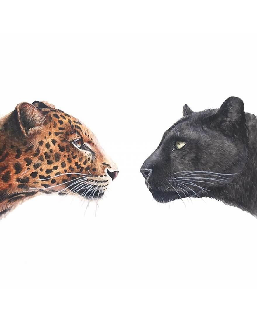 07-Leopard-and-Black-Panther-K-Schwarzoviously-Wildlife-Animal-Paintings-www-designstack-co