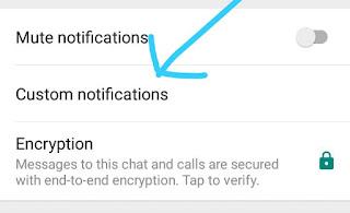 5 Tricks on whatsapp That will make You a Whatsapp Champ