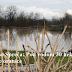 Izlila se Spreča: Pod vodom 30 hektara plodne oranice
