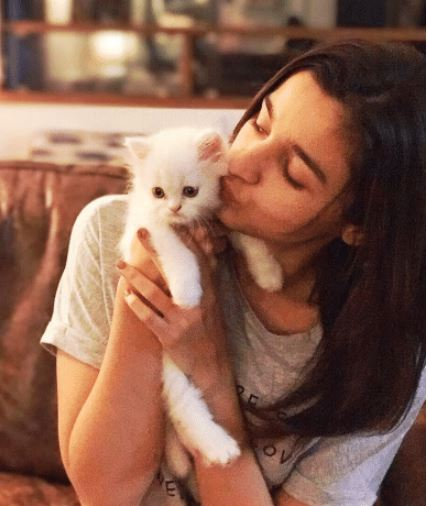 bollywood actress pet