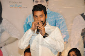 Ameerpetlo audio success meet photos-thumbnail-18
