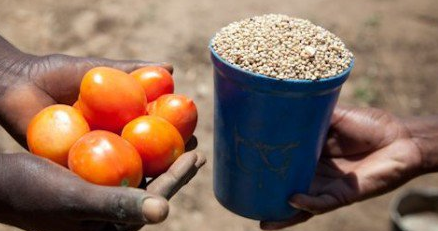 Ciri-ciri, Kelebihan, dan Kekurangan Sistem Ekonomi Tradisional | Software ERP Bisnis Ukirama