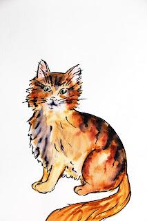 chat livre, aquarelle