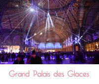 grand palais des glace