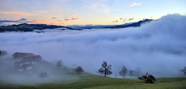 Bregenzer Wald am Morgen
