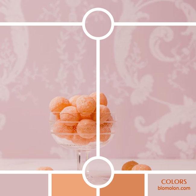 variedad_en_color_color_44