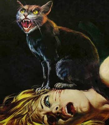 the black cat edgar allan poe summary write books online for  how to prepare a cv for internship