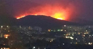Mumbai Forest, Mumbai Forest fire, Mumbai Forest fire in Goregaon, Mumbai Forest fire in Goregaon doused, Mumbai, Maharashtra Forest fire,