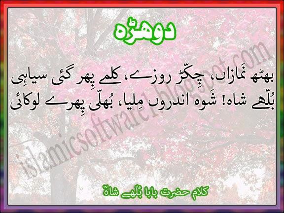 punjabi sufi poetry by Hazrat baba bulleh shah 4