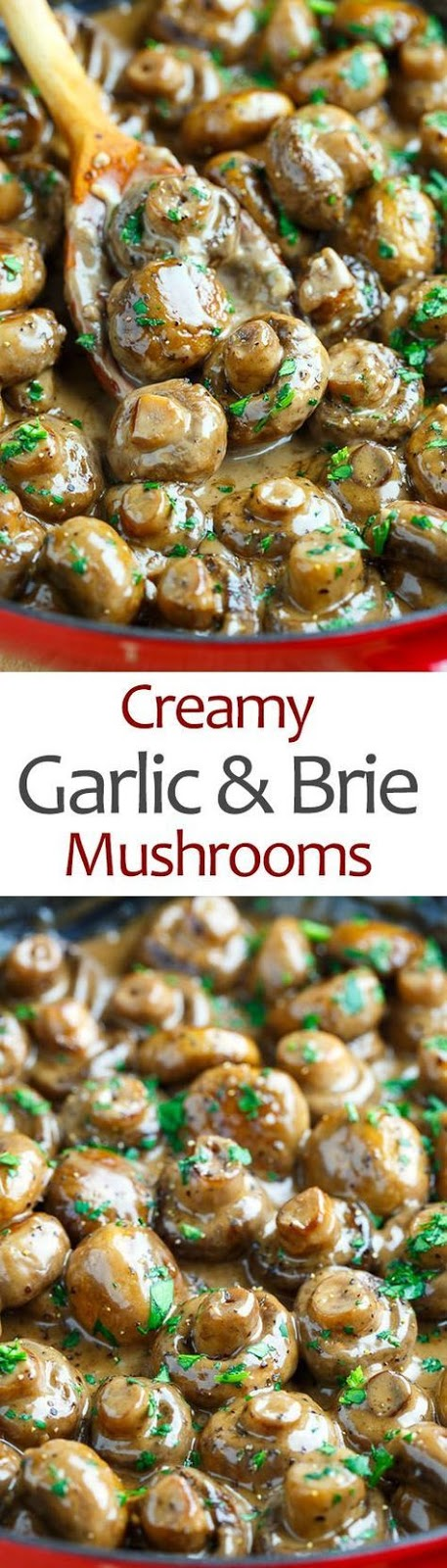 Creamy Garlic and Brie Mushrooms Recipes
