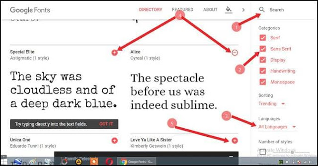 How to install Google fonts in your blgo website