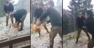 Φαντάροι σε στρατόπεδο των Iωαννίνων πέταξαν ζωντανό σκύλο σε γκρεμό (Νέο Βίντεο)