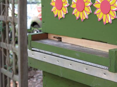 bee, beekeeping, checkerboarding, division board feeder, feeder, pollen, split, swarm control,