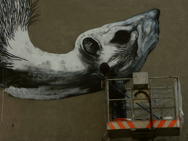 Street Artist ROA Working on a New Mural in Lodz, Poland for Fundacja Urban Forms. 5