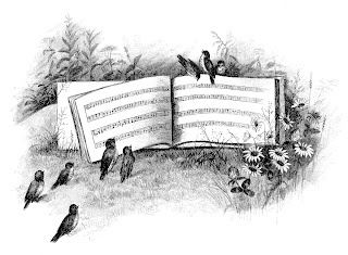 birds digital image sheet music download illustration