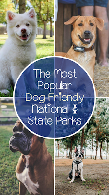 Take a fabulous trip to Dog Friendly National and State Parks!  Pet friendly, Dog friendly, National Parks that allow dogs, State Parks that allow pets