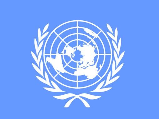 Fungsi dan Peran PBB dalam Kemerdekaan Republik Indonesia