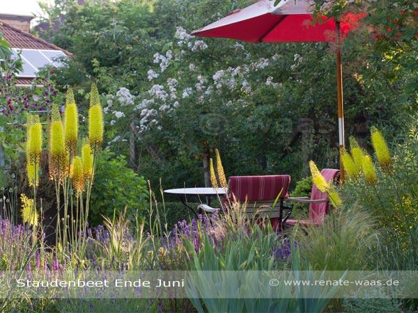 Ramblerrosen und Blumenbeete - Pflanzung für einen Landhausgarten, Bauerngarten oder Cottage Garden