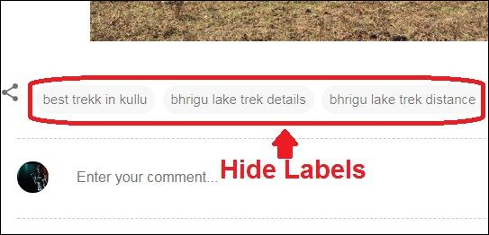 How to hide labels from published blog posts
